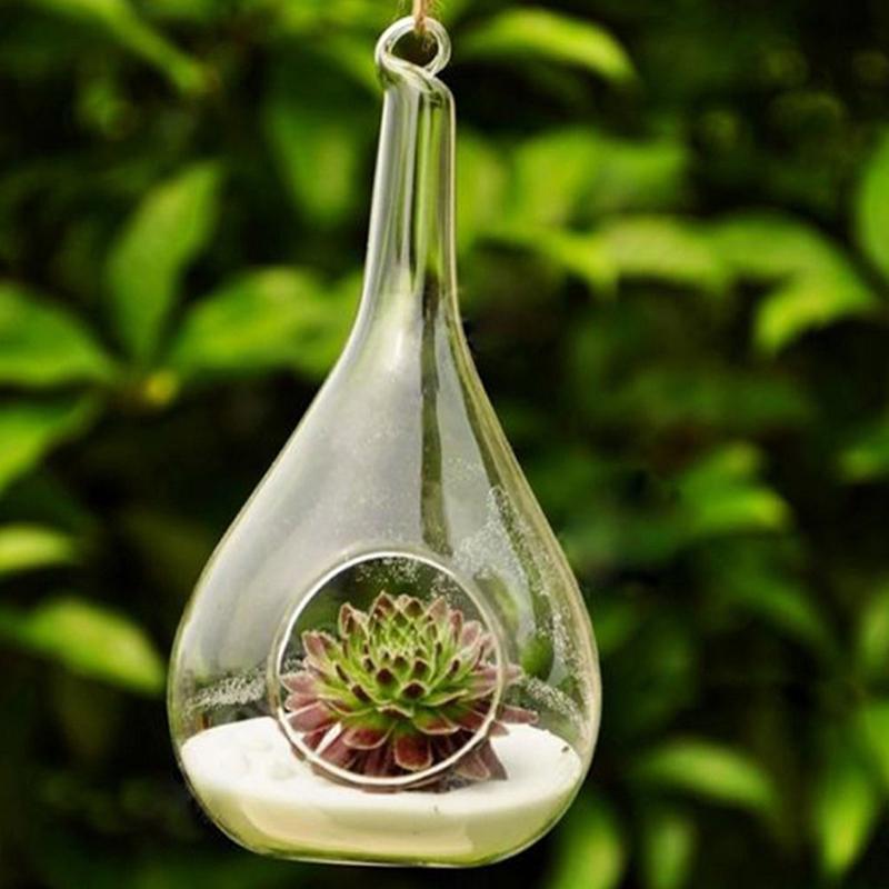 1X-Vase-a-fleurs-en-verre-transparent-la-decoration-de-fleur-et-de-plante-A4P3 miniature 7