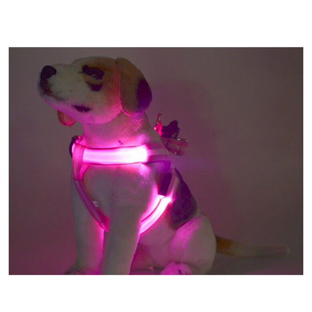 LED-luminous-Pet-Traction-rope-M-Blue-C7M2 thumbnail 7